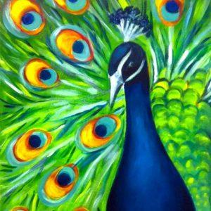 Blooming Peacock (D)